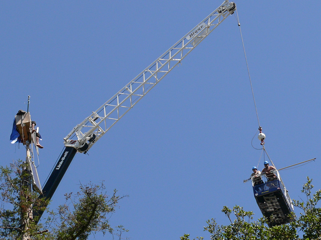 "Talk is cheap. ""Altercation between Berkeley tree-sitters and tree trimmers on August 21, 2008"""