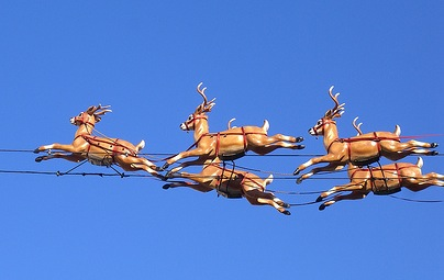 reindeer really know how to fly