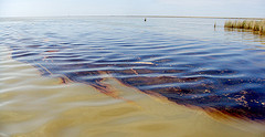 100406-G-XXXXA-002-Louisiana oil spill