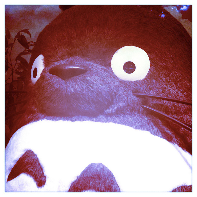 """Obilgatory Totoro picture whenever """"Ghibli"""" is mentioned"""