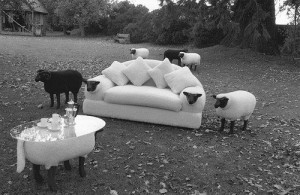 sheep furniture
