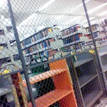 Moffitt has a dungeon library/unofficial fighting cage complete with colorful portable shelves!!!