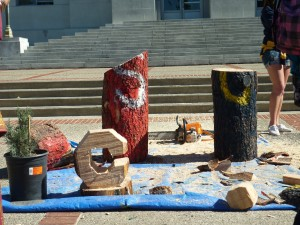The aftermath included not only poor red stumps, but a C for Cal, courtesy of the Forestry Club's chainsaw.